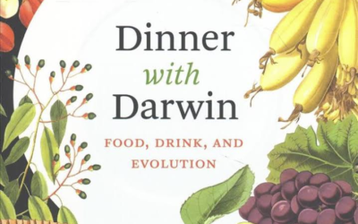 • Food and the evolution of life